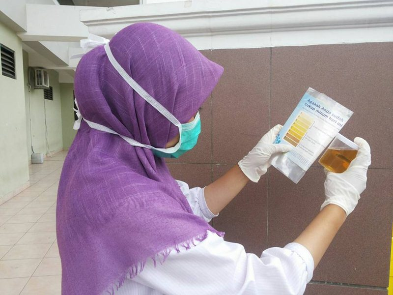 PemeriksaanWarna Urin